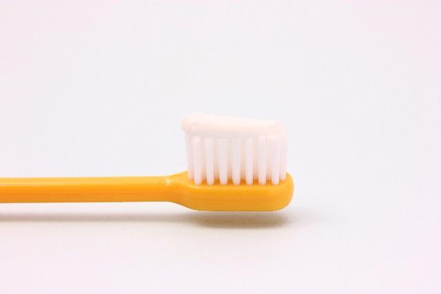 歯周病にならないために!